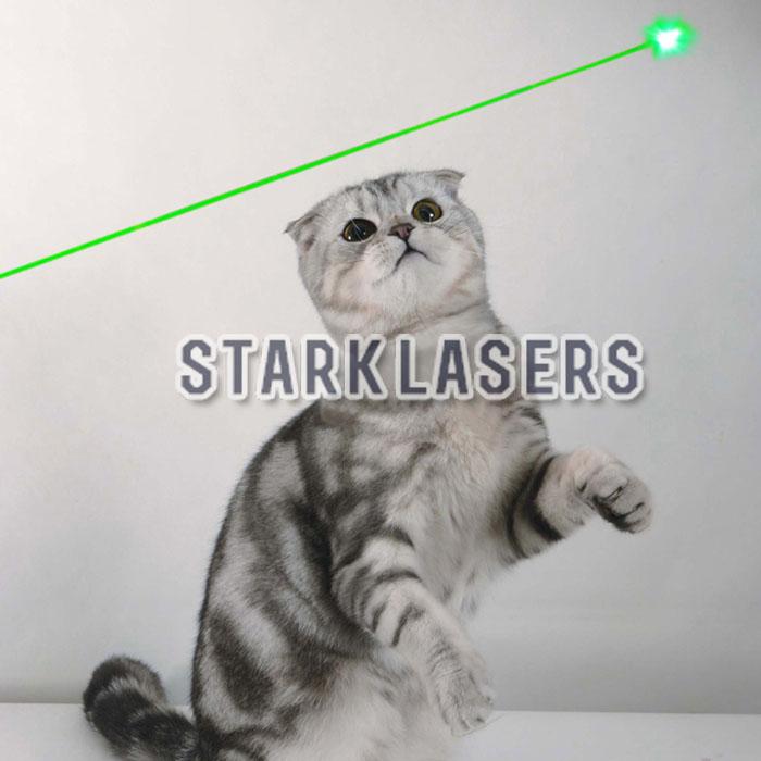 laserpointer katze 50mw kaufen 532nm gr ner f r katzenspielzeug spielen. Black Bedroom Furniture Sets. Home Design Ideas